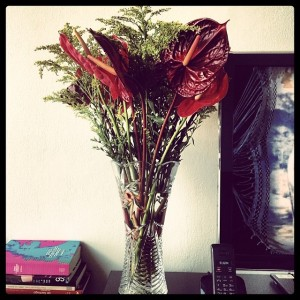 foto: fellipe fernandes instagram: @fellfernandes